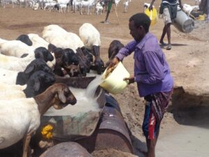 Drought_somali