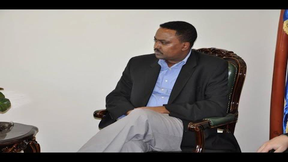 foreign minister workneh gebeyehu Ethiopian FM: Opposing Groups are Working in Egypt, Authorities yet to Comment