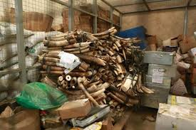 image 5 Vietnamese charged with wildlife trafficking in Uganda