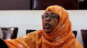 Somaliland Climate impact