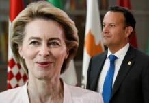 The European Union's leaders have thrown their weight behind German Defence Minister Ursula von der Leyen