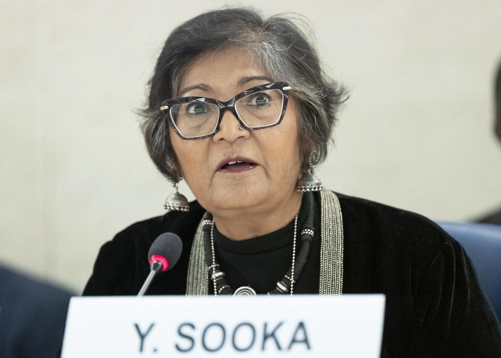 Yasmin Sooka, sudan
