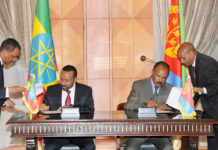 Eritrea:Reflections on the International Day of Peace