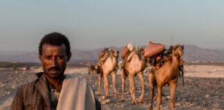 Afar Eritrea displacement.