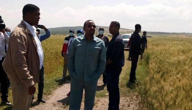 PM Abiy Ahmed Pays Visit To Arsi Zone