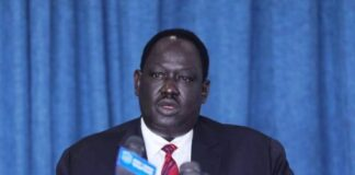 South Sudan army unification will be effective in November: official