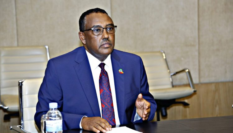 Deputy Prime Minister and Minister of Foreign Affairs, Demeke Mekonnen