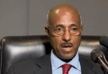 Seyoum Mesfin