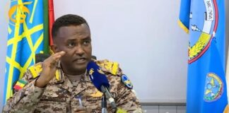 Air Force Rejects TPLF's Claim Of Being Attacked