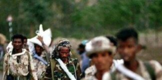 Eritrea rejects U.N. arms