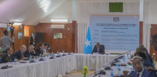 Somali government UN