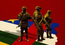 Russia, Rwanda send hundreds of troops to C.Africa
