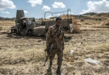 member of the Ethiopian Defence Forces
