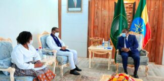 Deputy PM Demeke Meets UN Human Rights Representative For East Africa