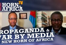 Propaganda, War by Media & R2P Interventionist